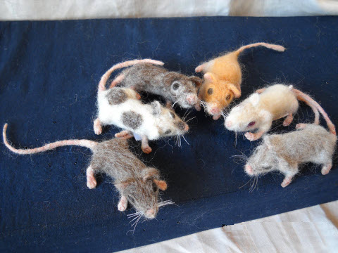Mouse Litter 1
