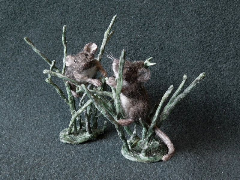 Salt Marsh Harvest Mice